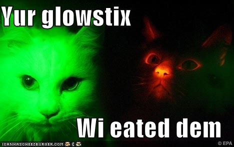 glow-in-the-dark-cats